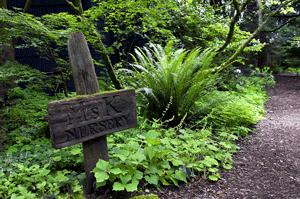Kruckeberg Botanic Garden