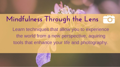 Mindfulness through the Lens
